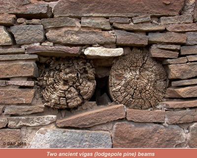 Ancient Vigas